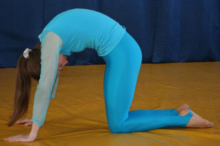 Марждариасана йога в харькове